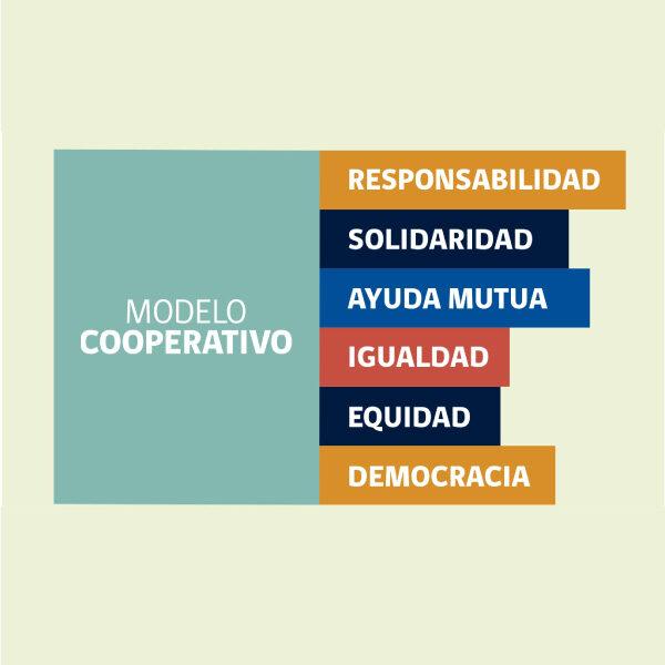 Video educativo asociatividad y cooperativismo CNCA
